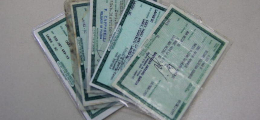 carteira-de-identidade-por-andressa-ramos-03-08-5-e1533338850232